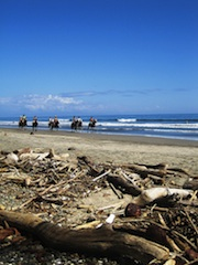 Beach_horse_tour_in_Mal_Pais_2